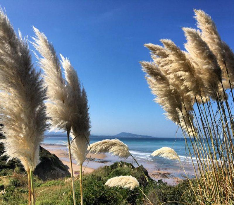 plage_pays_basque